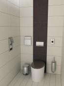 EKSKLIUZYVINĖ tualetas