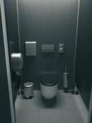 MATINIO PLIENO tualetas